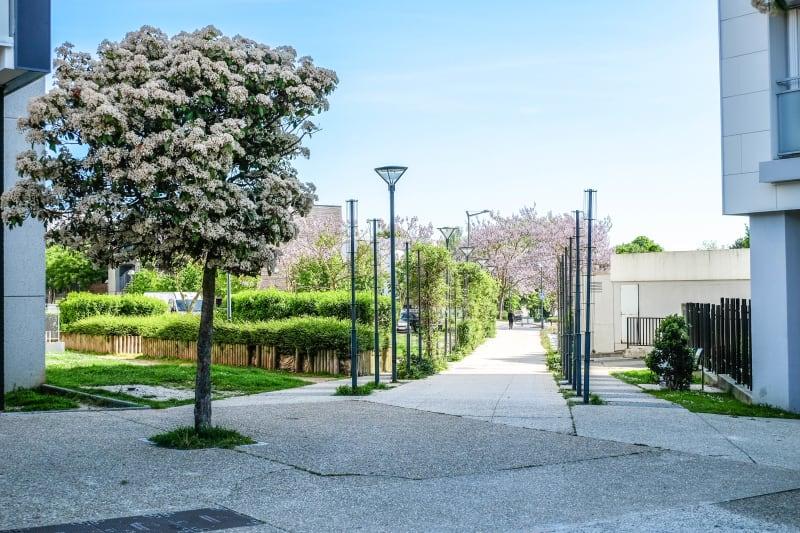A deux pas du parc, des écoles et des commerces de Canteleu - Image 3